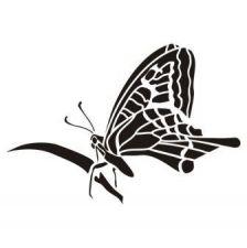 Трафарет бабочка на травинке трафарет