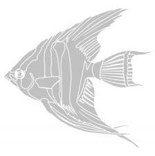 В китайской мифологии рыба